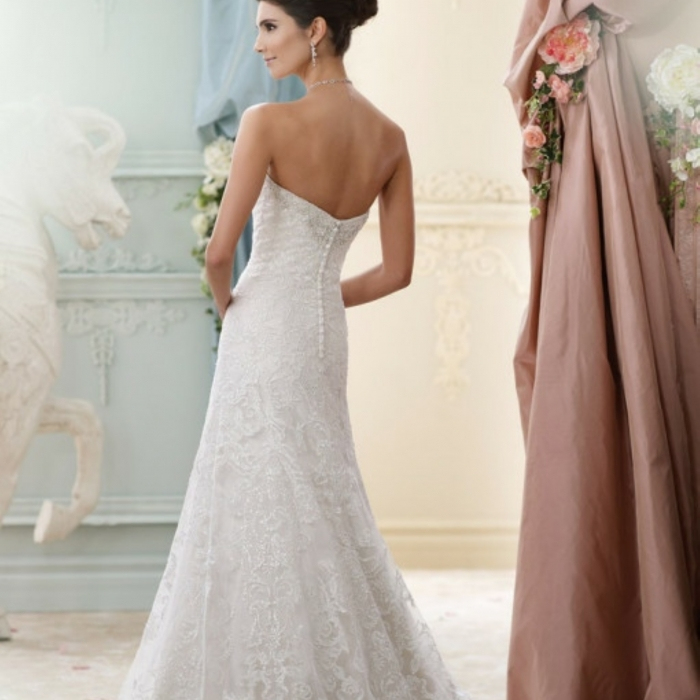 2018/03/wwwelenaswedgr14_nufika_elenas_wedding_dresses.jpg